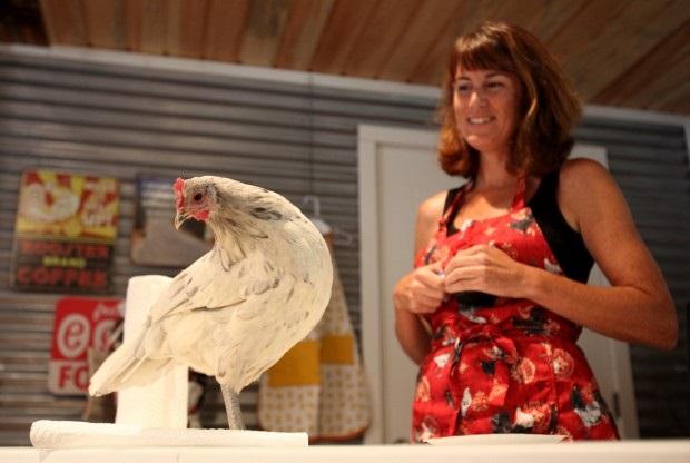 Giene Keyes at Chicken Clicker Training Seminar - photo courtesy of Giene Keyes